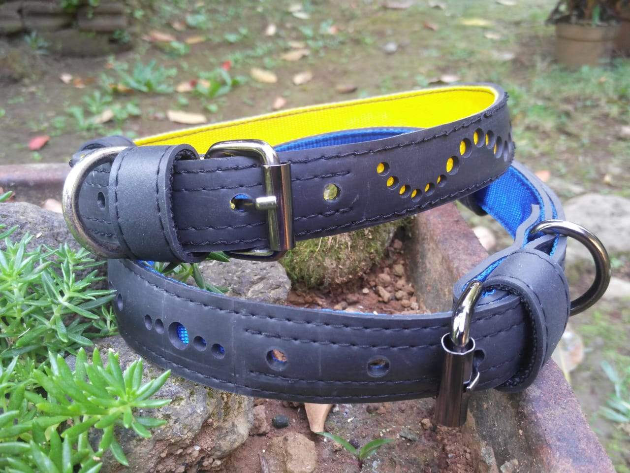 Eco Friendly Recycled Inner Tube Vegan Dog Collar from Paguro Upcycle